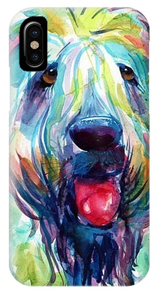 Colorful iPhone Case - Fluffy Wheaten Terrier Portrait By by Svetlana Novikova