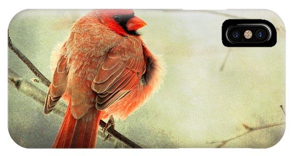 Fluffy Winter Cardinal IPhone Case