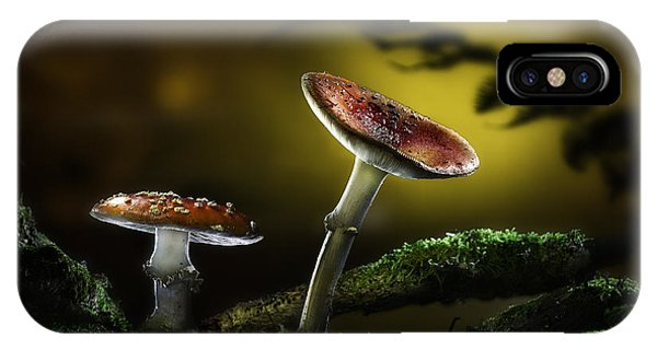 Fly Mushroom - Red Autumn Colors IPhone Case