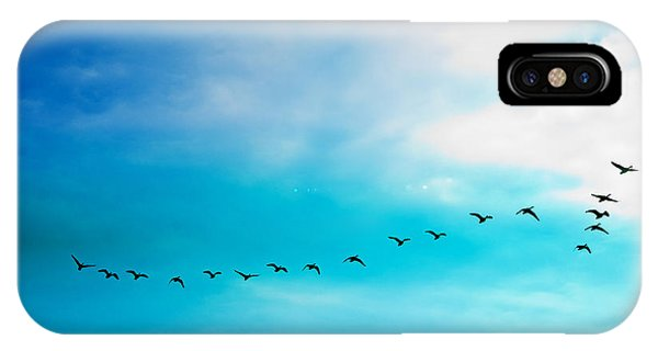 Flying Away IPhone Case