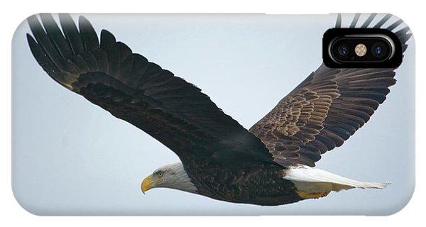 Flying Bald Eagle IPhone Case