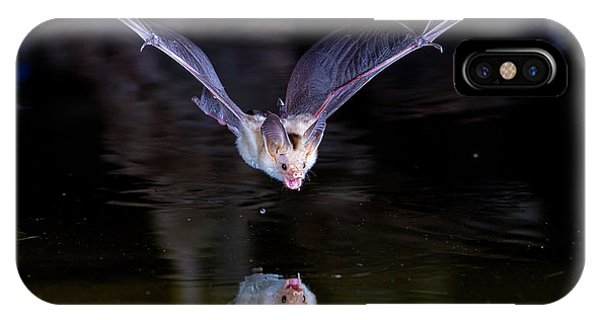 Flying Bat With Reflection IPhone Case