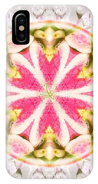 iPhone Case - Flying Colors by Alicia Kent