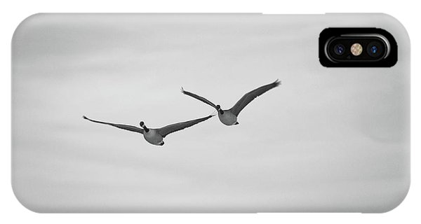 Flying Companions IPhone Case