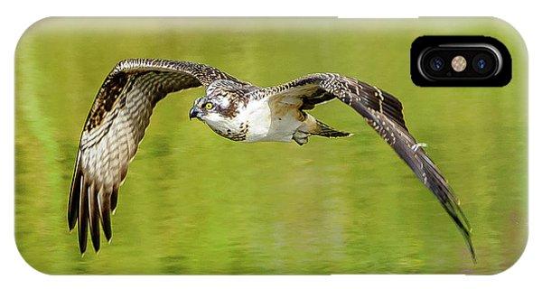 Flying Osprey IPhone Case