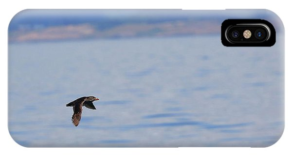 Auklets iPhone Case - Flying Rhino by BYETPhotography