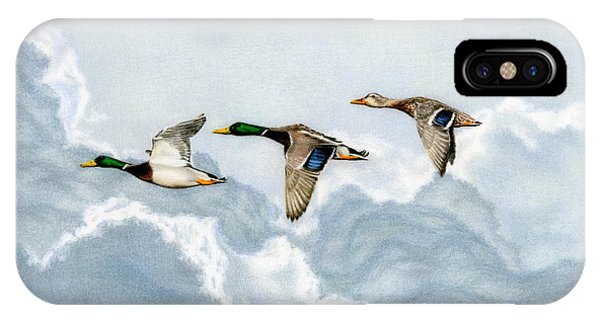 Sky iPhone Case - Flying South by Sarah Batalka