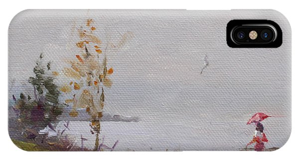Seagull iPhone Case - Fog And Rain At Gratwick Waterfront Park by Ylli Haruni