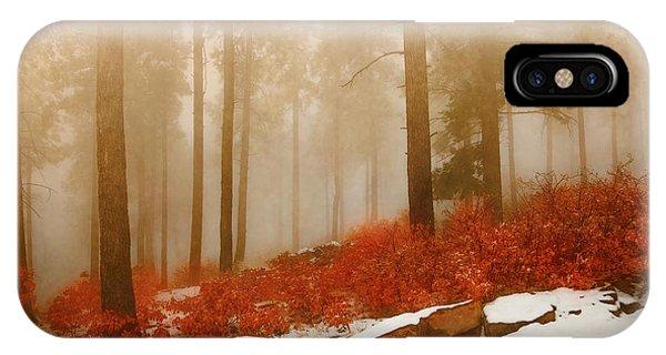 Fog II IPhone Case