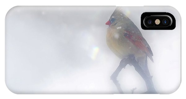 IPhone Case featuring the photograph Fog by Jackson Pearson