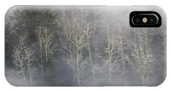 Foggy Alders In The Forest IPhone Case