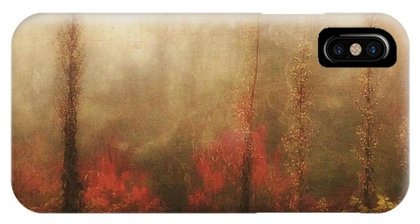 Foggy Fall On The Parkway IPhone Case
