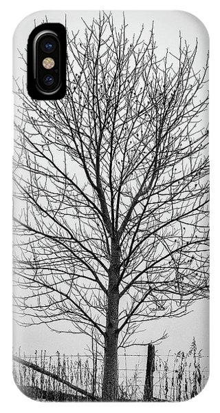 Foggy Lone Tree Hill Fine Art IPhone Case
