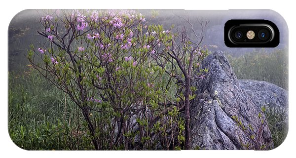 Foggy Pink Azalea IPhone Case