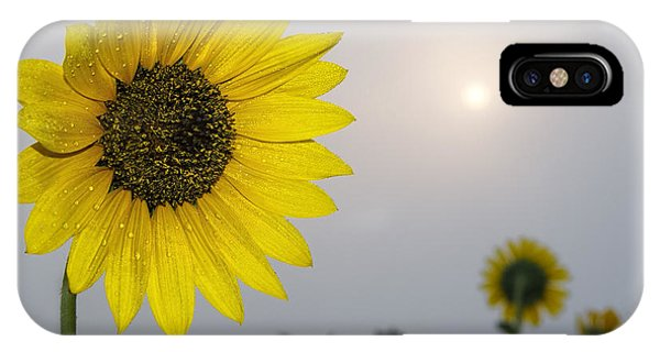 Foggy Sunflowers IPhone Case