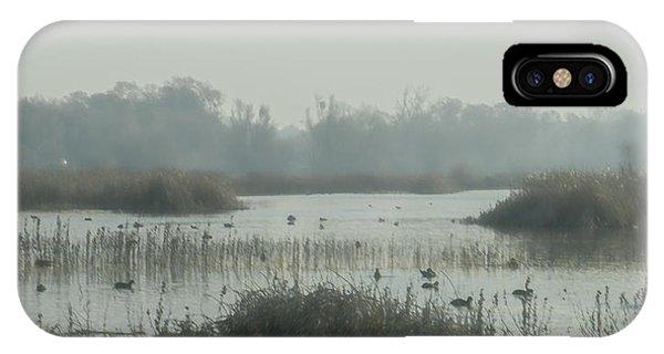 Foggy Wetlands IPhone Case