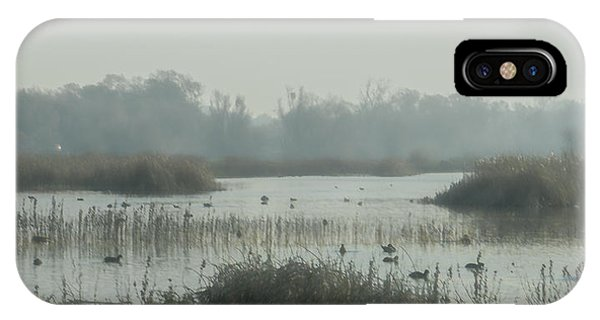 Foggy Wetlands IPhone Case