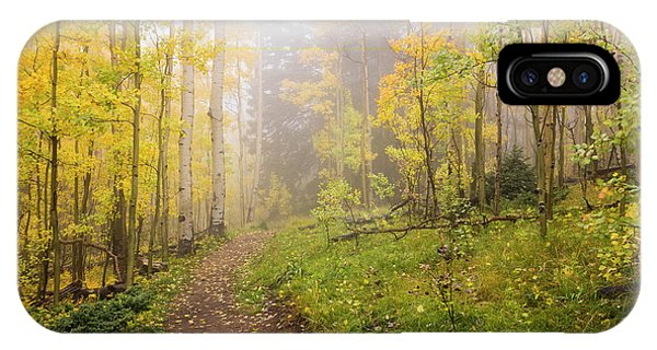 Foggy Winsor Trail Aspens In Autumn 2 - Santa Fe National Forest New Mexico IPhone Case