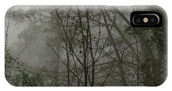Foggy Woods Photo  IPhone Case