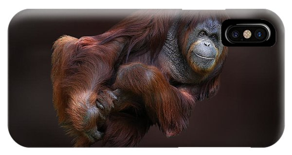 Folded Orangutan IPhone Case