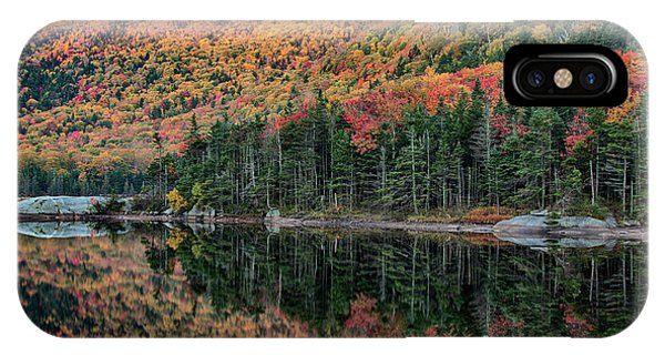 foliage at dawn on Beaver pond IPhone Case