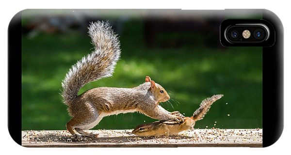 Food Fight Squirrel And Chipmunk IPhone Case