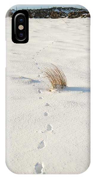 Footprints In The Snow II IPhone Case