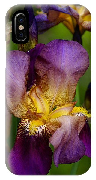 For The Love Of Iris IPhone Case