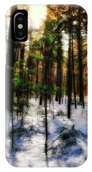 Forest Dawn IPhone Case
