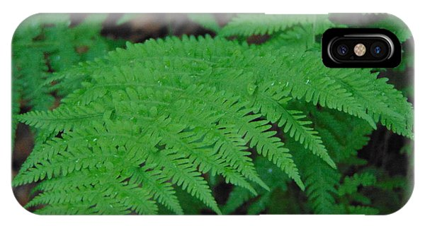 Forest Fern IPhone Case