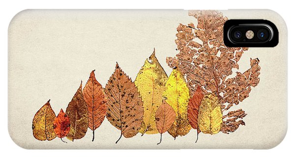 Nature Still Life iPhone Case - Forest Of Autumn Leaves II by Tom Mc Nemar