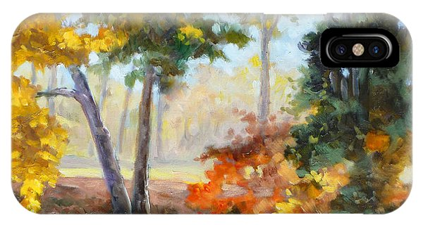 Forest Park - Autumn Reflections IPhone Case