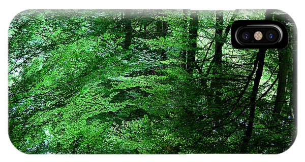 Greenery iPhone Case - Forest Reflection by Dave Bowman