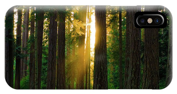 Forest Sunset IPhone Case