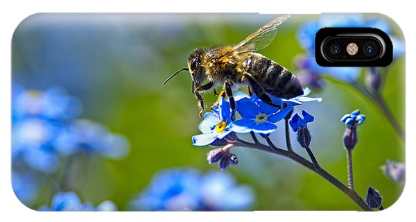 Honeybee iPhone X Case - Forget Me Not Bee 2 by Sharon Talson