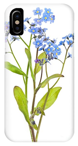 Forget-me-not Flowers On White IPhone Case