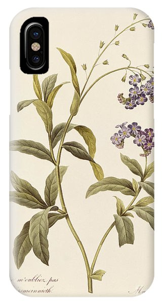 Botanical iPhone Case - Forget Me Not by Pierre Joseph Redoute