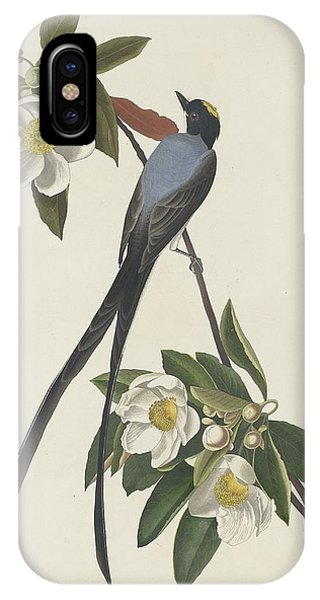 1851 iPhone X Case - Forked-tail Flycatcher by Dreyer Wildlife Print Collections