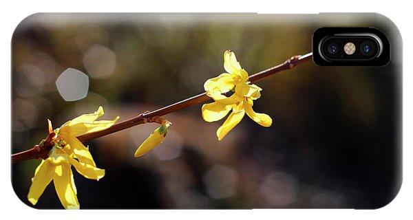 Forsythia Flowers IPhone Case
