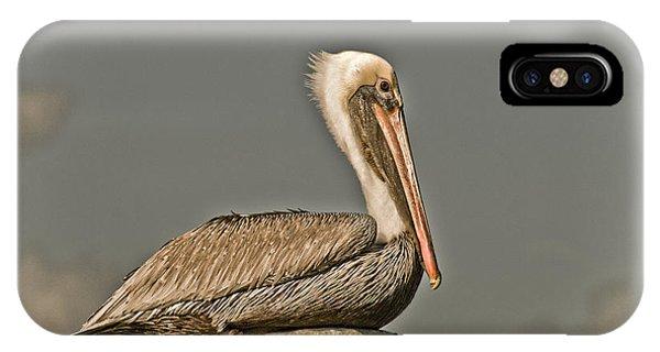 Fort Pierce Pelican IPhone Case