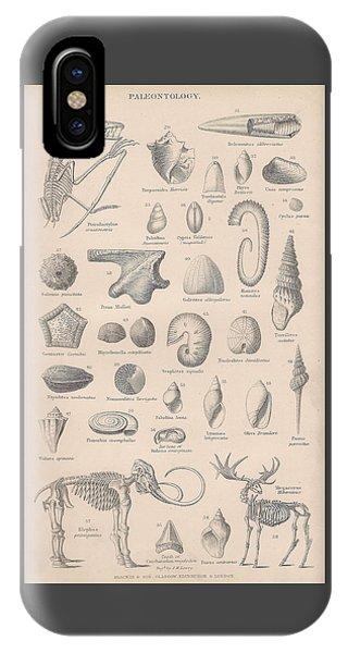 Fossils, Paleontology IPhone Case