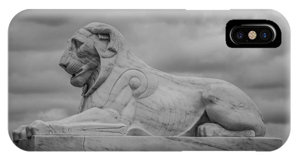 Fountain Lion  IPhone Case