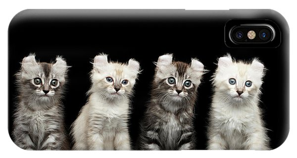 Four American Curl Kittens With Twisted Ears Isolated Black Background IPhone Case