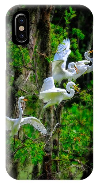IPhone Case featuring the photograph Four Egrets by Harry Spitz