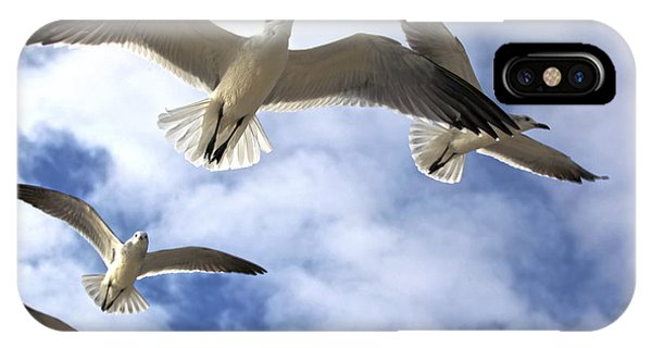 Four Gulls IPhone Case