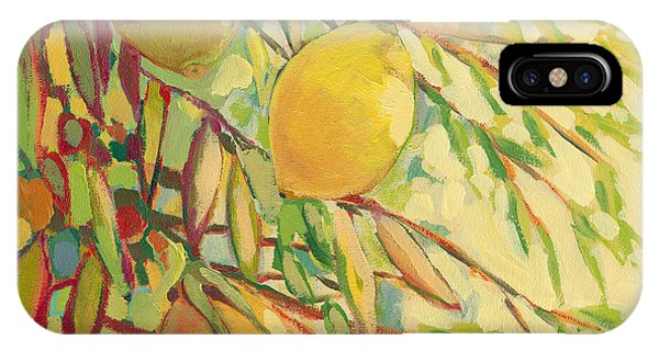 Branch iPhone Case - Four Lemons by Jennifer Lommers