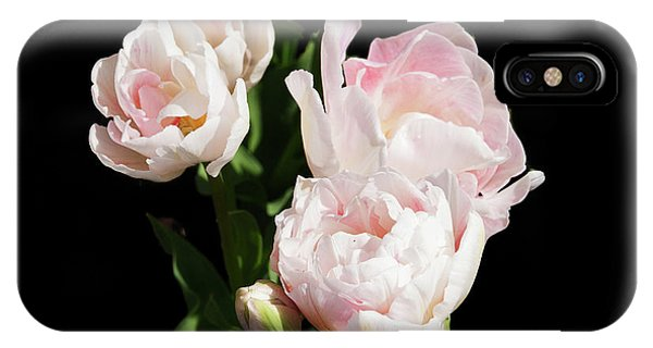 Four Pink Tulips And A Bud On Black IPhone Case