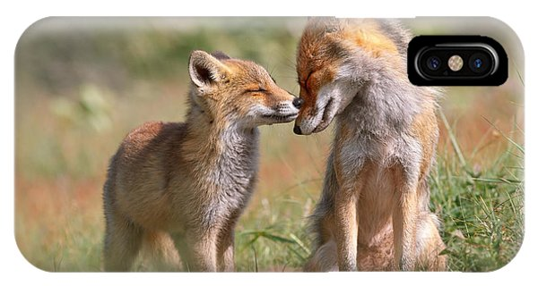 Pup iPhone Case - Fox Felicity II - Mother And Fox Kit Showing Love And Affection by Roeselien Raimond
