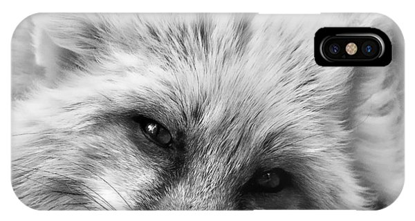 Fox Head Black And White Square Format IPhone Case