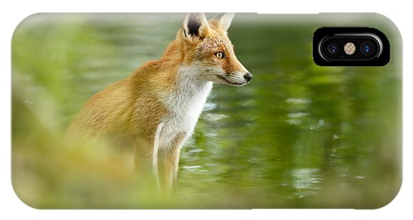 Deep Thought iPhone Case - Fox Reflections by Roeselien Raimond